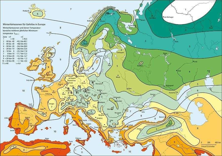 определение зоны морозостойкости